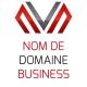 Nom de Domaine + Offre Business + Paramétrage Domaine
